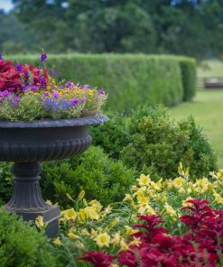 Garden Care and Control Products