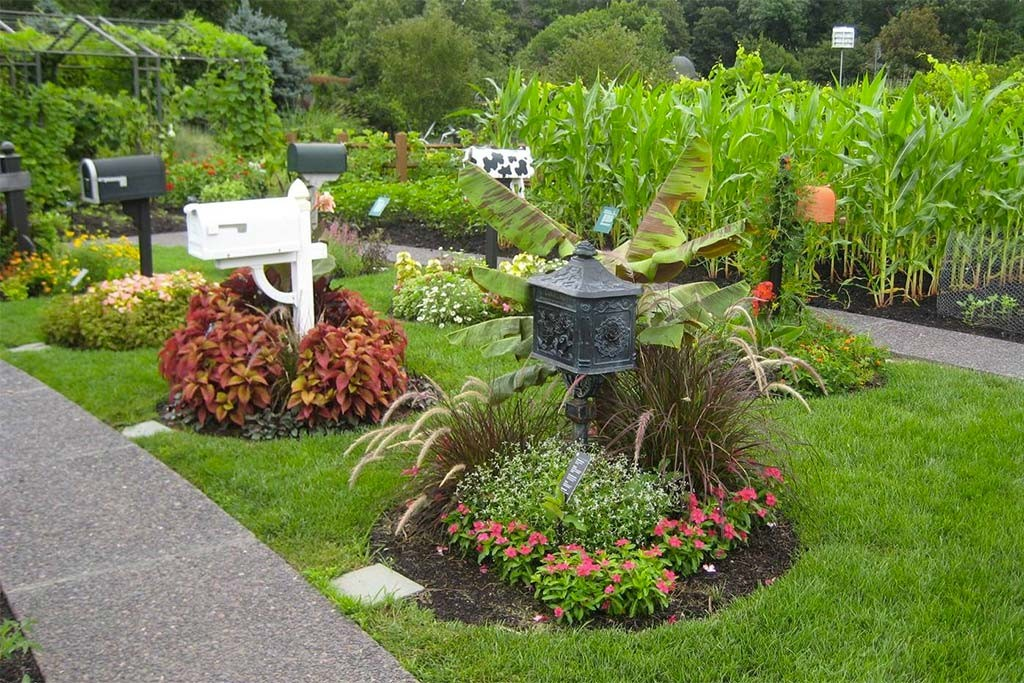 Create Your Own Mailbox Garden