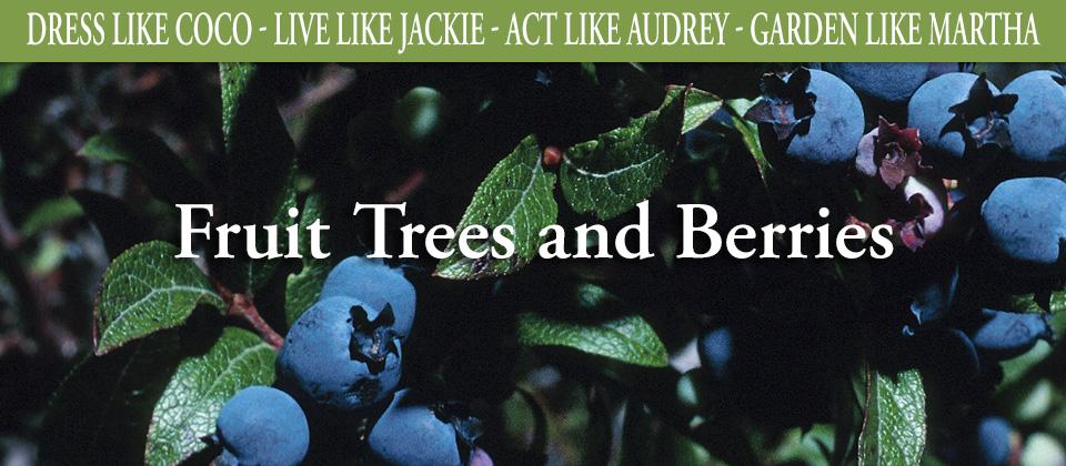 25_Fruittrees